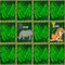 Alpha - Zoo Concentration Game Icon