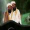 Celebrity Hitman Terrorist Alert icon